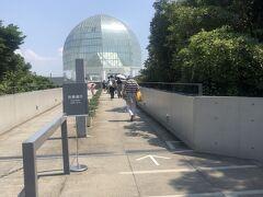 めちゃ暑い・・・  水族館は現在予約をしないと入館できないので前日に予約しておきました。