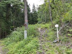 農祖峠へんろ道は標識がはっきりとしており迷わずに済みました。しかし道は険しいです。大宝寺山門近くの宿まで20km歩いて時間切れとなりました。明朝お参りします。