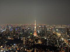 文字通り、六本木ヒルズの屋上からの景色を望むことが出来ます。 窓がないので、風を受けながらの夜景観賞となります。 さっきの展望デッキより高い位置からの東京タワー。 これもいいですね。