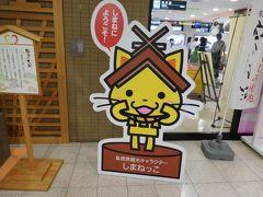 出雲空港へ到着。 「しまねっこ」の看板がお出迎え。