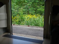 鶴ヶ坂。 盛岡以北で線路沿いによく見られた黄色い花。ここにも咲いている。 なんの花でしょう。夏らしくていい。 (花の知識は幼稚園児以下です)