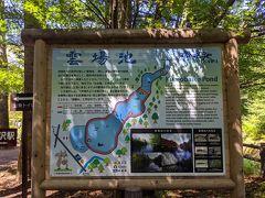 雲場池です。 何度も軽井沢を訪れていますが、雲場池を訪れるの初めてです。