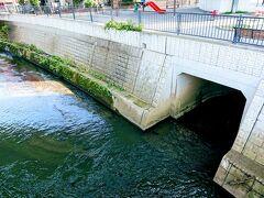 これが市沢川の河口です。 帷子川に注ぎます。  続いては、帷子川をさかのぼり、帷子遊水緑道を目指します。