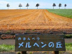 『メルヘンの丘』 緩やかな丘の上に立つ7本のカラマツがランドマークの大規模畑作が行われている丘陵地です。