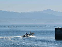 金華山沖の漁場を目指すのでしょうか??