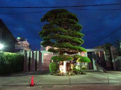 ルートインからの自転車散策は、10時のチェックアウトまでに終了させてチェックアウトしましたが、湯田温泉にはほかにもいくつか観光できるところがあります。 湯田で夜のお食事ついでに行ってきた中原中也記念館(17時には閉館)のお向かいの