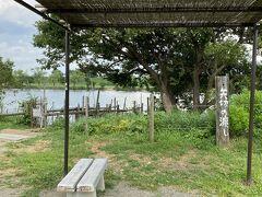川岸には細川たかしの歌で有名な矢切の渡しがありました。 今でも渡し舟があって対岸に行くことが出来ますが、県を跨いでしまうので今回はパスしました。