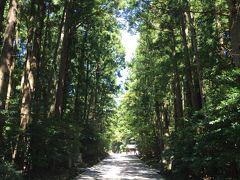蝉も鳴いててうるさくて暑いけど、この並木道は結界内の神道なのか、ちょっと暑さが和らいたような…