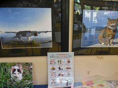 島の駅には猫がらみのグッズ販売もあます。  猫写真コンテストもあるような・・・。