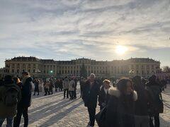 シェーンブルン宮殿にやってきました! が、いっぱいすぎて入れない!!! 諦めて別日に行くことにして予定変更します。