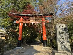 帰りに宇治上神社にも寄ってみました。