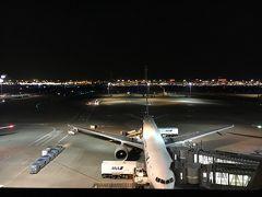 今回の出発は羽田発2:30というメチャ遅い便です。 仕事を早退する必要ないのは良し。