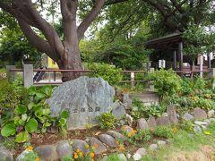 富士塚公園