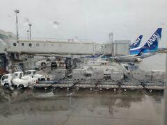着陸前の揺れで気付いて、定刻より早く新千歳空港に到着。 北海道はやっぱり近いですよね(^-^) それにしても、あいにくの天気・・・そして寒い(・_・;)