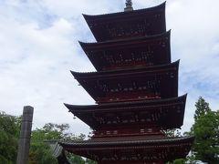 食後は最勝院に移動し五重塔などを見学。そして新寺町を経由して、12:37禅林街に到着。