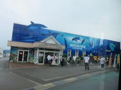 越前松島水族館は長蛇の列