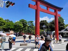 参道を通り、鶴岡八幡宮の前まで来ました。観光地だけあり、これまでと比べ人の多さに驚きます。