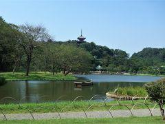 いきなりですが、三渓園園内です。 三溪園は生糸貿易により財を成した実業家で茶人の原 三溪によって作られた日本庭園です。175,000平方mに及ぶ園内には国の重要文化財建造物10棟、横浜市指定有形文化財建造物3棟を含め、京都や鎌倉から移築された17棟の建築物を有し、広大な敷地の起伏を生かした庭園との調和がはかられています  バス車内などでシャッターを押す機会は有りましたが、何故かデジカメの調子が悪く★ 焦りましたが、到着したら何事も無かったかのように元に戻りました、ホッ