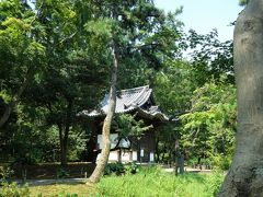 旧天瑞寺寿塔覆堂(重要文化財)。 天正19(1591)年、豊臣秀吉が病気から快復した母・大政所の長寿を祈って建てた、生前墓の寿塔を覆っていた建物です。桃山時代らしい豪壮な彫刻や、柱とその上の組物などにはかつて鮮やかな彩色が施されていましたが、現在は風化して一部に痕跡を残すのみとなっています。 この覆堂が在った天瑞寺は大徳寺内の寺院の一つでしたが、明治時代の始めに廃寺となり現在は存在していません 三溪園への移築は明治38年・1905年のことで、原三溪が内苑に移築した最初の古建築です
