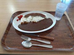 道の駅内のレストラン「ほたる」。 次男が食べた「清里ソーセージカレー」。 その他2名は軽めに冷やし和麺をチョイス。
