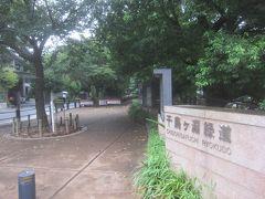 千鳥ヶ淵緑道に来ました 桜の季節は大勢の人であふれているここの緑道ですが、この時期は閑散としていました 外出自粛? 雨だから?