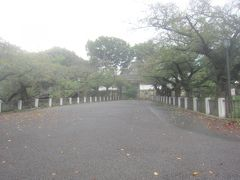靖国神社に参拝する前にちょっと北の丸公園を散策です