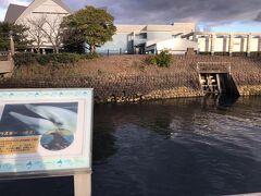 無事に鹿児島市内に到着です。  すぐそばに「かごしま水族館」があって、隣の錦江湾につながる屋外の「イルカ水路」で1日3回ほど「青空イルカウォッチング」が開催されているそうです。  ちょっと遅くてイルカは見られず・・・残念!