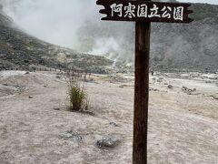摩周湖を諦め、屈斜路湖(くっしゃらこと読みます)経由で釧路に行く途中に偶然見つけた硫黄山。 煙もくもく。