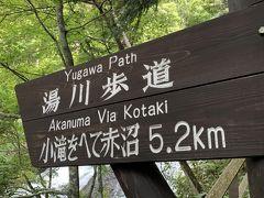 湯滝から湯川沿に歩き小田代ヶ原を抜けて赤沼に行きます。行程約9キロの3時間の行程。戦場ヶ原が去年の台風19号で木道が壊れてしまい歩けないと言うことで、少し大回りな形で歩くことになりましたが、小学生に合わせてゆっくり回れるのでキツくない行程でした。