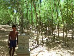 Prasat Totoeng Thngai