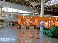 モスクワ ブヌコボ空港 (VKO)