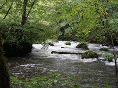 奥入瀬渓流にきました~!  この日は残念ながら雨(;.;) しかもここに来てるときが1番雨が強かった!