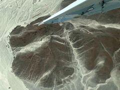 あらかじめバスで予習していた地上絵を次々に巡り、セスナはその上空を45度くらい機体を傾けて左右1回転ずつ旋回する。 それもなるべく地上絵が見やすいように低空へ飛ぶのでアクロバット飛行の様だ。  そしてそのたびに超ハイテンションのパイロットが「ココ、ココ!ヒダリ!ハネノシタ~!!」とアゲアゲのアナウンス。(翼の下の山肌に宇宙飛行士)