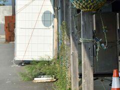 田代島のカキ養殖はかつてのにぎわいはありません。