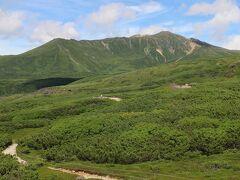旭岳の北西隣にある当麻岳も優美で美しい。