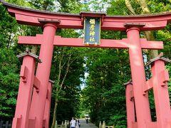 弥彦神社へ。一の鳥居から中に入ります。
