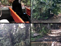 水陸両用車 アーミーダックに乗ってジャングル探検