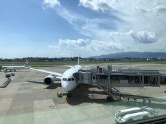 目の前には羽田便がスポットインしたところでした。マーシャーラーが誘導する様子を観察したところでお昼を食べにいったん外へ。