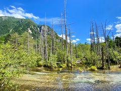 岳沢湿原は、立ち枯れの木が多くて雰囲気があります。  ここの川も透き通っていて綺麗!  静かでいつまでも見続けていた風景です。