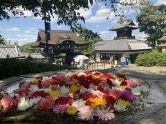 大谷本廟でお参りして。。京都駅まであと少しなので歩きます。フォーシーズンズやハイアットリージェンシーを通り過ぎます。泊まってみたいけど、、ハイアットリージェンシーやってないのかな?外国人が少ないから?