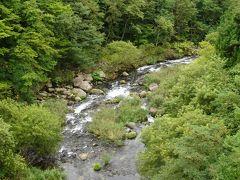 橋上から見た渓谷の景色は見事です。 そして、