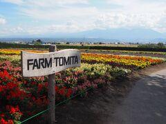 ファーム富田 コロナ前とは比べ物にならないですが、たくさんの観光客が来ていました。