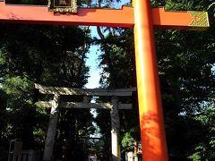 日陰でも汗が止まらない中、馬橋稲荷神社。  赤い鳥居は、木製。 樹齢400年のヒバの木でできてるんだって。