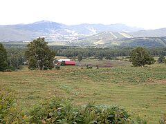 振り返ると遠くに牛がいます。たまに風がモ~と声を運んでくる。