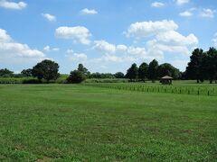 谷中村跡。 谷中村は、かつて栃木県下都賀郡に在った村ですが、明治39(1906)年に強制廃村となり、同郡藤岡町(現・栃木市)に編入されました。 室町時代からこの地は肥沃な農地として知られており、江戸時代には主に古河藩が開拓を行いました。当時から洪水が頻発していたため、古河藩はこの地の年貢を大幅に減免する措置を取りました。 土地を増やすために当時村に在った赤麻沼の堤の位置を変えようとして失敗、堤が崩れ、沼の水が村内に流入してしまいました。この後、大雨のたびに堤が決壊するようになりました。 明治中期以降は、渡良瀬川が氾濫するたびに板倉町などとともに足尾鉱毒の被害を受けるようになり、以後、鉱毒反対運動の中心地となるのです