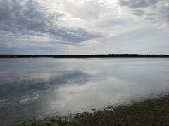 風連湖の上を野鳥が飛び交い、鳴き声が響き渡る。人もまばらです。(出会ったのは約10人ほど)