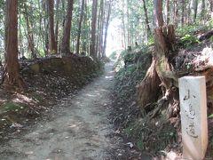 日本最古の道と言われる山の辺の道。雰囲気あります。 簡単な道ですがそれでも油断してると道を間違えちゃいます。しばらく反対方向を歩いて焦って引き返しました。所々、しっかり地図を見ましょう。