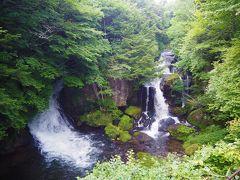 龍頭の滝の周りの木々は緑の景色、紅葉時期になるとかなり混みます