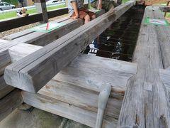 宮城県に戻って鳴子温泉へ。 しばらくやってなかった市営駐車場の足湯が復活してました!  足湯好きな息子がさっそく入ってました。