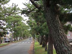 2<旧東海道松並木> 駅から南に5分ほど歩くと、突然こんな風景が現れます。 これは、旧東海道の舞坂宿に続く「松並木」。約700mにわたって大小370本の松並木が続いています。 全国的にも、これだけの長さで松並木が残る場所は少ないでしょう。